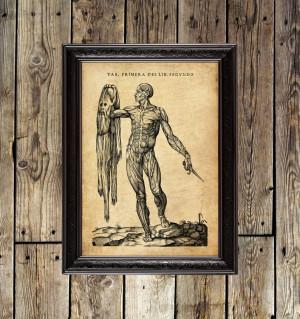Man without skin. Historia...